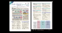 資料イメージ:a-blog cms プロフェッショナル・エンタープライズライセンス 機能紹介チラシ